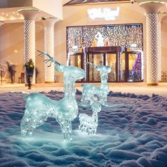 Гостиница Hilton Garden Inn Moscow Новая Рига с домашними животными