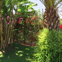 Отель Madeira Panoramico Hotel Португалия, Фуншал - отзывы, цены и фото номеров - забронировать отель Madeira Panoramico Hotel онлайн фото 2