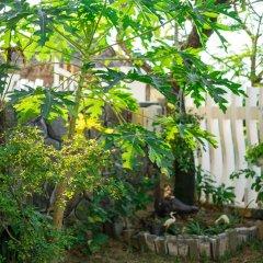 Отель An Bang Beach Nature Homestay фото 3
