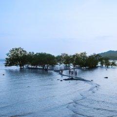 Отель Villa Cha-Cha Krabi Beachfront Resort Таиланд, Краби - отзывы, цены и фото номеров - забронировать отель Villa Cha-Cha Krabi Beachfront Resort онлайн приотельная территория фото 2