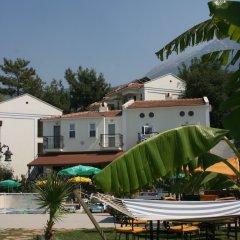 Ant Apart Hotel Турция, Олудениз - отзывы, цены и фото номеров - забронировать отель Ant Apart Hotel онлайн фото 5