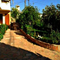 Отель Guesthouse Pollo Албания, Ксамил - отзывы, цены и фото номеров - забронировать отель Guesthouse Pollo онлайн
