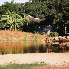Отель Addo African Home фото 2