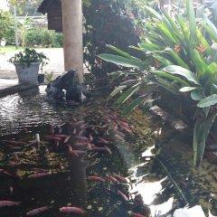 Hotel La Casa de Nery Луизиана Ceiba