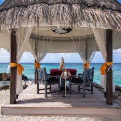 Отель Taj Coral Reef Resort & Spa Maldives Мальдивы, Северный атолл Мале - отзывы, цены и фото номеров - забронировать отель Taj Coral Reef Resort & Spa Maldives онлайн фото 3