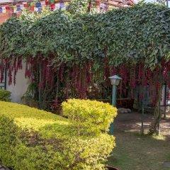 Отель Shaligram Hotel Непал, Лалитпур - отзывы, цены и фото номеров - забронировать отель Shaligram Hotel онлайн фото 5