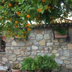 Nazar Hotel Турция, Сельчук - отзывы, цены и фото номеров - забронировать отель Nazar Hotel онлайн фото 2