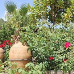 Kas Dogapark Турция, Патара - отзывы, цены и фото номеров - забронировать отель Kas Dogapark онлайн фото 17