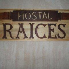 Отель Hostal Raices интерьер отеля фото 2