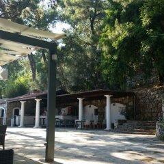 Отель Club Nimara Beach Resort Otel - All Inclusive Мармарис фото 6