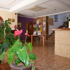 Отель Hostal Tarba интерьер отеля фото 2