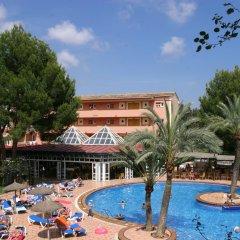 Отель Aparthotel Cabau Aquasol Испания, Пальманова - 1 отзыв об отеле, цены и фото номеров - забронировать отель Aparthotel Cabau Aquasol онлайн бассейн фото 2