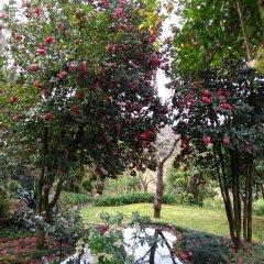 Отель Quinta do Sardão фото 27