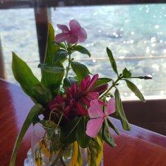 Отель Kaveka Французская Полинезия, Папеэте - отзывы, цены и фото номеров - забронировать отель Kaveka онлайн интерьер отеля фото 3