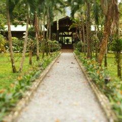 Отель The Lodge at Pico Bonito фото 13