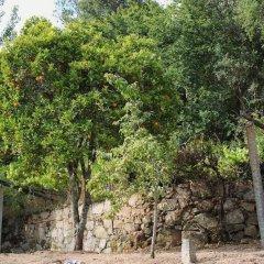 Отель Quinta do Sobreiro Португалия, Марку-ди-Канавезиш - отзывы, цены и фото номеров - забронировать отель Quinta do Sobreiro онлайн фото 3
