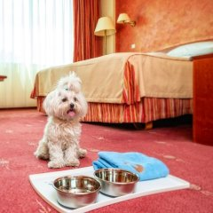 Hotel HP Park Plaza Wroclaw с домашними животными
