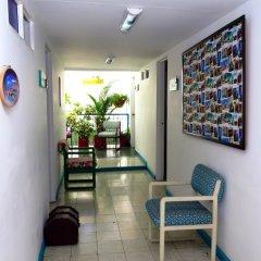 Отель Hostal Pajara Pinta интерьер отеля фото 3
