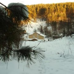 Гостевой Дом Жар-Птица Белокуриха