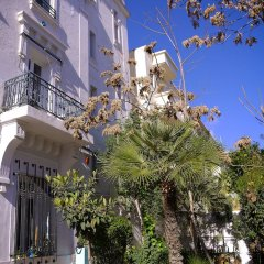 Villa Les Palmes in Tunis, Tunisia from 65$, photos, reviews - zenhotels.com photo 6