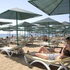 Lioness Hotel Турция, Аланья - отзывы, цены и фото номеров - забронировать отель Lioness Hotel онлайн пляж