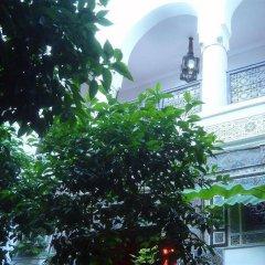 Отель Riad Jenaï Demeures du Maroc Марокко, Марракеш - отзывы, цены и фото номеров - забронировать отель Riad Jenaï Demeures du Maroc онлайн фото 10