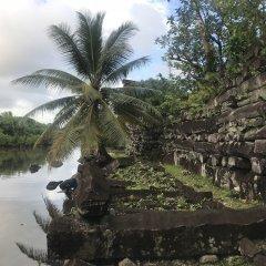 Отель Yvonne's Hotel Федеративные Штаты Микронезии, Понпеи - отзывы, цены и фото номеров - забронировать отель Yvonne's Hotel онлайн фото 4