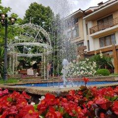 Отель National Palace Hotel Болгария, Сливен - отзывы, цены и фото номеров - забронировать отель National Palace Hotel онлайн бассейн