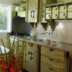 Отель Blue Wave Houseboat Нидерланды, Амстердам - отзывы, цены и фото номеров - забронировать отель Blue Wave Houseboat онлайн питание