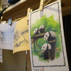 Number 3-1 Youth Hostel Chengdu интерьер отеля фото 3