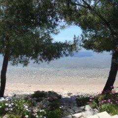Отель Para Thin Alos Греция, Ситония - отзывы, цены и фото номеров - забронировать отель Para Thin Alos онлайн фото 23