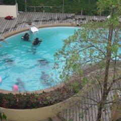 Отель Silver Sands Beach Resort с домашними животными
