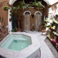 Отель Casa Pedro Loza Мексика, Гвадалахара - отзывы, цены и фото номеров - забронировать отель Casa Pedro Loza онлайн бассейн фото 2