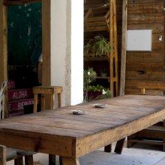 Отель Macarena Hostel Мексика, Канкун - отзывы, цены и фото номеров - забронировать отель Macarena Hostel онлайн питание фото 3