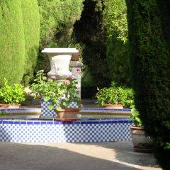 Отель Casa de los Bates Испания, Мотрил - отзывы, цены и фото номеров - забронировать отель Casa de los Bates онлайн фото 15
