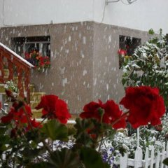 Отель Iundova Guest House Болгария, Боровец - отзывы, цены и фото номеров - забронировать отель Iundova Guest House онлайн помещение для мероприятий фото 2