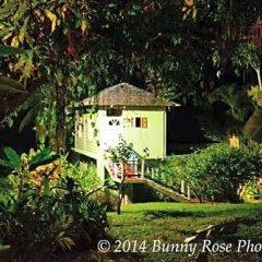Отель Rio Vista Resort фото 17
