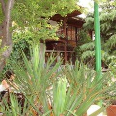 Отель Chakarova Guest House Болгария, Сливен - отзывы, цены и фото номеров - забронировать отель Chakarova Guest House онлайн фото 4