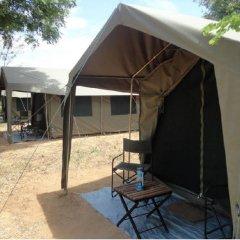 Отель Mahoora Tented Safari Camp - Kumana Шри-Ланка, Яла - отзывы, цены и фото номеров - забронировать отель Mahoora Tented Safari Camp - Kumana онлайн фото 9