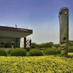 Отель Four Points by Sheraton New Delhi, Airport Highway фото 4
