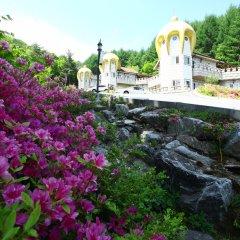Отель KOREA QUALITY Elf Spa Resort Hotel Южная Корея, Пхёнчан - отзывы, цены и фото номеров - забронировать отель KOREA QUALITY Elf Spa Resort Hotel онлайн фото 14