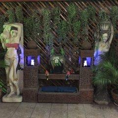 Отель Pattaya Holiday Lodge Паттайя с домашними животными