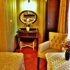 Sultanahmet Park Hotel Стамбул удобства в номере фото 2