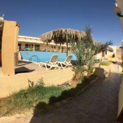 Отель Red Sea Dive Center пляж фото 2