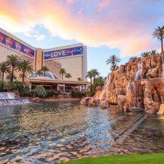 Отель The Mirage США, Лас-Вегас - 10 отзывов об отеле, цены и фото номеров - забронировать отель The Mirage онлайн фото 8