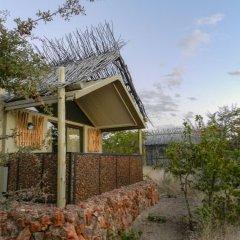 Отель Etosha Village фото 5