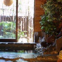 Отель Pension Moshimoshi Pierrot Япония, Минамиогуни - отзывы, цены и фото номеров - забронировать отель Pension Moshimoshi Pierrot онлайн бассейн фото 2