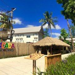 Отель Cicada Lanta Resort Таиланд, Ланта - отзывы, цены и фото номеров - забронировать отель Cicada Lanta Resort онлайн детские мероприятия фото 2