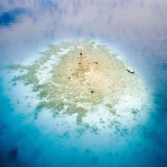 Отель Ninamu Resort - All Inclusive Французская Полинезия, Тикехау - отзывы, цены и фото номеров - забронировать отель Ninamu Resort - All Inclusive онлайн пляж