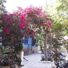 Отель Casa Rural Mi Campo Испания, Ориуэла - отзывы, цены и фото номеров - забронировать отель Casa Rural Mi Campo онлайн фото 2